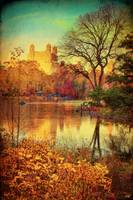 A Fall Afternoon in Central Park