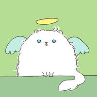 Persian Cat Angel