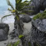 """Beach 1"" by bbriboy"