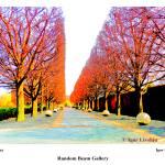 """Solar Alley"" by randombeam"