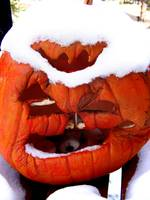 Grumpy old man Jackolantern with snow