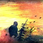 """""""Surrender"""" by ZunildaSarete"""