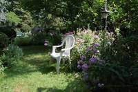 Chair Surrounded By Phlox