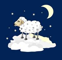 schaf auf wolke - sheep on cloud