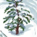 """Little Pine in the Blizzard"" by rogerwhite"
