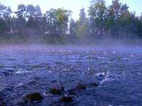 Fog on the river 451