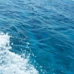 """Blue Blue sea"" by JoaoFxBraz"