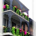 """New Orleans Porches"" by jbjoani2"