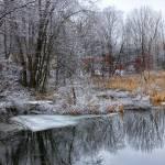 """Winter Pond"" by charlottelembo"