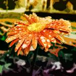 """Daisy Abstract 2"" by RandomThoughts"