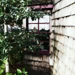 """""""cottage window"""" by DBGilmore"""