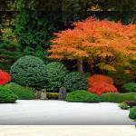 """""""Garden pano 5a-1"""" by DBGilmore"""