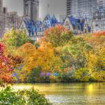 """Central Park in Fall"" by jwlankford"