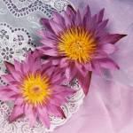 """""""Flowers"""" by Dilanka"""