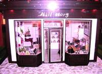 *A Miniature House: ShoeShop*