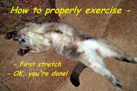 Exercise 101