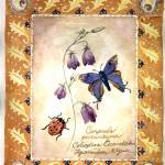 """""""Butterfly & Ladybug with Flower"""" by kyaudeart"""