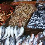 """""""Fish stall at market"""" by CarrieWaters"""