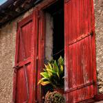 """""""French Window"""" by JannArtPhotography"""