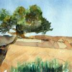 """Tree on the Cliff"" by ShaSha"
