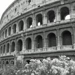 """Colosseum"" by RussellRice"