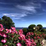 """Fragrant Gardens by the Sea"" by Sam_Turgeon"
