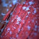 """Snow"" by nilomanalo"