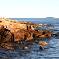 Maine Shore 2 Art Prints & Posters by David Patton