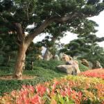 """""""Budda Park #3"""" by ceci_628"""