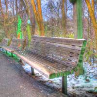 A Bench @ Cincinnati Zoo Art Prints & Posters by Jeremy Lankford