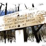 """On The Appalachian Trail"" by Norm"