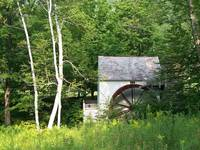 VERMONT MILL WITH WHITE BIRCH TREES