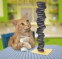 Orange Tabby Cat With Pile of Cookies and Milk
