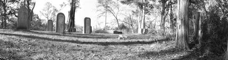 Cemetery Panoramic #3