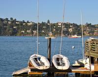 Two Boats in Sausalito