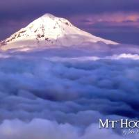 Mt Hood Art Prints & Posters by John Melton