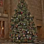 """""""Weihnachtsbaum Zwei"""" by jddean"""