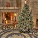 """""""Weihnachtsbaum"""" by jddean"""