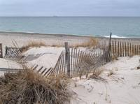 Sandy Neck Beach, Cape Cod