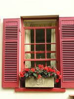Red Shutters with Begonias