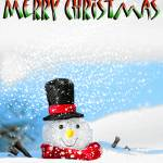 """Merry Christmas/Frosty"" by bjimages"