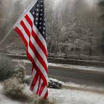 """USA Flag"" by bjimages"