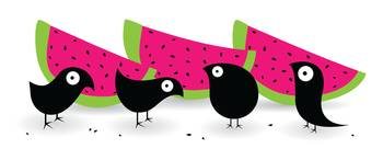 Watermelon Blackbirds