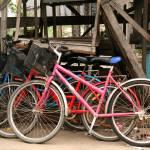 """Bicycles"" by lakoz"