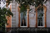 Savannah windows