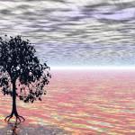"""""""The Last Tree"""" by nibbana"""