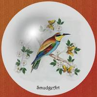 #0389 Bee Eater