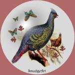 """""""#0391 Blood Pheasant"""" by MadelineAllen"""