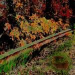 """""""Guardrail Stop"""" by byStangz"""