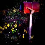 """""""Mailbox"""" by johnburnett"""